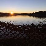 Solnedgang på sjøfugljakt