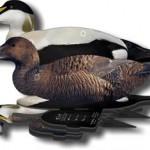 NRA FUDS – sammenleggbare lokkefugler